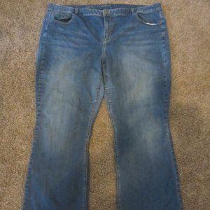 Lane Bryant Boot Cut Jeans 28 Regular